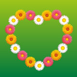 Daisy Aster Marguerite Flowers Heart Stock Images