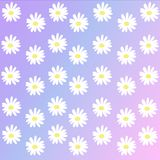 Daisy Background Images libres de droits