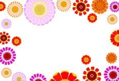 Daisy background Stock Image