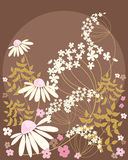 Daisy Background Royaltyfria Bilder