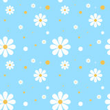 Daisy Background Photographie stock libre de droits