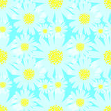 Daisy Background Illustration Libre de Droits