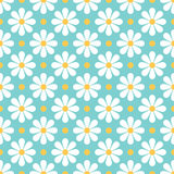 Seamless daisy background and pattern vector illustration royalty free illustration