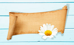 Daisy Banner Memo Stock Images