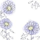 Daisy bloeit, bloemen vectorreeks installaties van de inkttekening, zwart-wit zwarte lijn getrokken elementen Royalty-vrije Stock Foto's