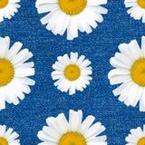 Daisy bloeit naadloos patroon op jeansachtergrond Royalty-vrije Stock Afbeeldingen