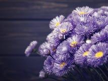 Daisy bloemen over oud houten bureau Stock Fotografie