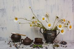 Daisy blooming flowers- vintage vase metal Royalty Free Stock Photography
