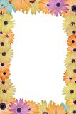 Daisy Border. Spring Daisies bordering the paper Stock Photography