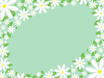 Daisy border. Spring feel background with daisy border Royalty Free Stock Images