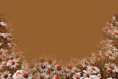 Daisy Border Brown Royalty Free Stock Photos