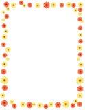 Daisy border / frame. Cute Floral border / daisy frame  [beautiful Spring flowers border Stock Photo