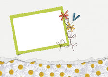 Daisy Border with frame Stock Image