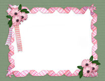 Daisy border Pink ribbons  Stock Images