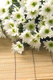 Daisy bouquet Royalty Free Stock Images