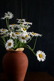 Daisy Bouquet in Brown Clay Vase Dark Background White Flowers Stock Photo