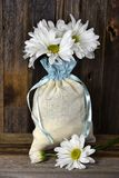 Daisy bouquet in muslin sack Stock Image