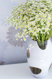 Daisy bouquet. Rich daisy bouquet in a glass vase Stock Photo