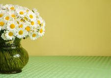 Daisy bouquet in a vase. Big bouquet of daisies in a vase on a green tablecloth in front of a yellow wall - natural light - lots of copy space stock photography