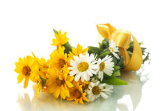 Daisy bouquet Stock Image