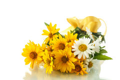 Daisy bouquet Royalty Free Stock Photo