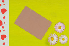 Daisy and card on lime paper Stock Image