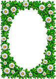 Daisy cartoon frame Royalty Free Stock Photo