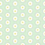 Daisy Chain Seamless Pattern Foto de archivo