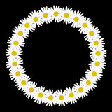 Daisy chain in the shape of a circle frame Stock Photography