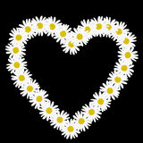 Daisy chain in the shape of a heart Royalty Free Stock Photo