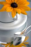 Daisy on coffee cup Royalty Free Stock Photography