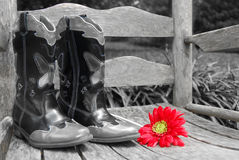 Daisy by cowboy boots. Red gerber daisy on old rocker by cowboy boots stock photo