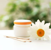 Daisy, cream jar, cosmetics. Daisy and a cream jar on green blurred background Stock Images