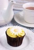 Daisy Cupcake & Tea. Stock Photos