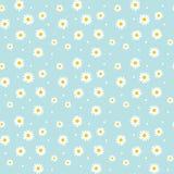 Daisy cute seamless pattern. Royalty Free Stock Image