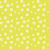Daisy cute seamless pattern. Floral retro style simple motif. white flowers on color background fabric Royalty Free Stock Photography