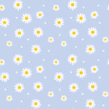 Daisy cute seamless pattern. Floral retro style simple motif. white flowers on color background fabric Royalty Free Stock Photo