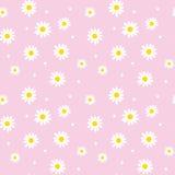 Daisy cute seamless pattern. Royalty Free Stock Photo