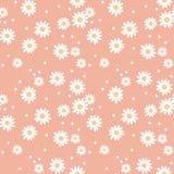Daisy cute seamless pattern. Stock Photography