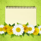 Daisy and dandelion flowers lines and a notepad Stock Images