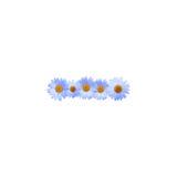 Daisy Dash Mark blu Immagini Stock Libere da Diritti