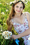 Daisy day Stock Images