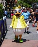 Daisy Duck Stock Image