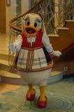 Daisy Duck en un equipo báltico Imagenes de archivo