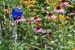 Daisy en Vlinder Stock Afbeeldingen