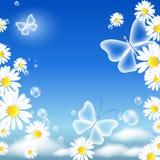 Daisy en vlinders royalty-vrije illustratie