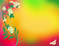Daisy fantasy background. A daisy fantasy background with copyspace Royalty Free Stock Photo