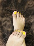 Daisy Feet lizenzfreie stockbilder
