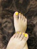 Daisy Feet imagens de stock royalty free