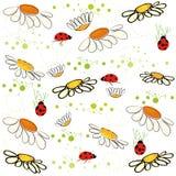 Daisy field and lady bird spring pattern vector background. Daisy field and lady bird spring pattern vector Stock Photos
